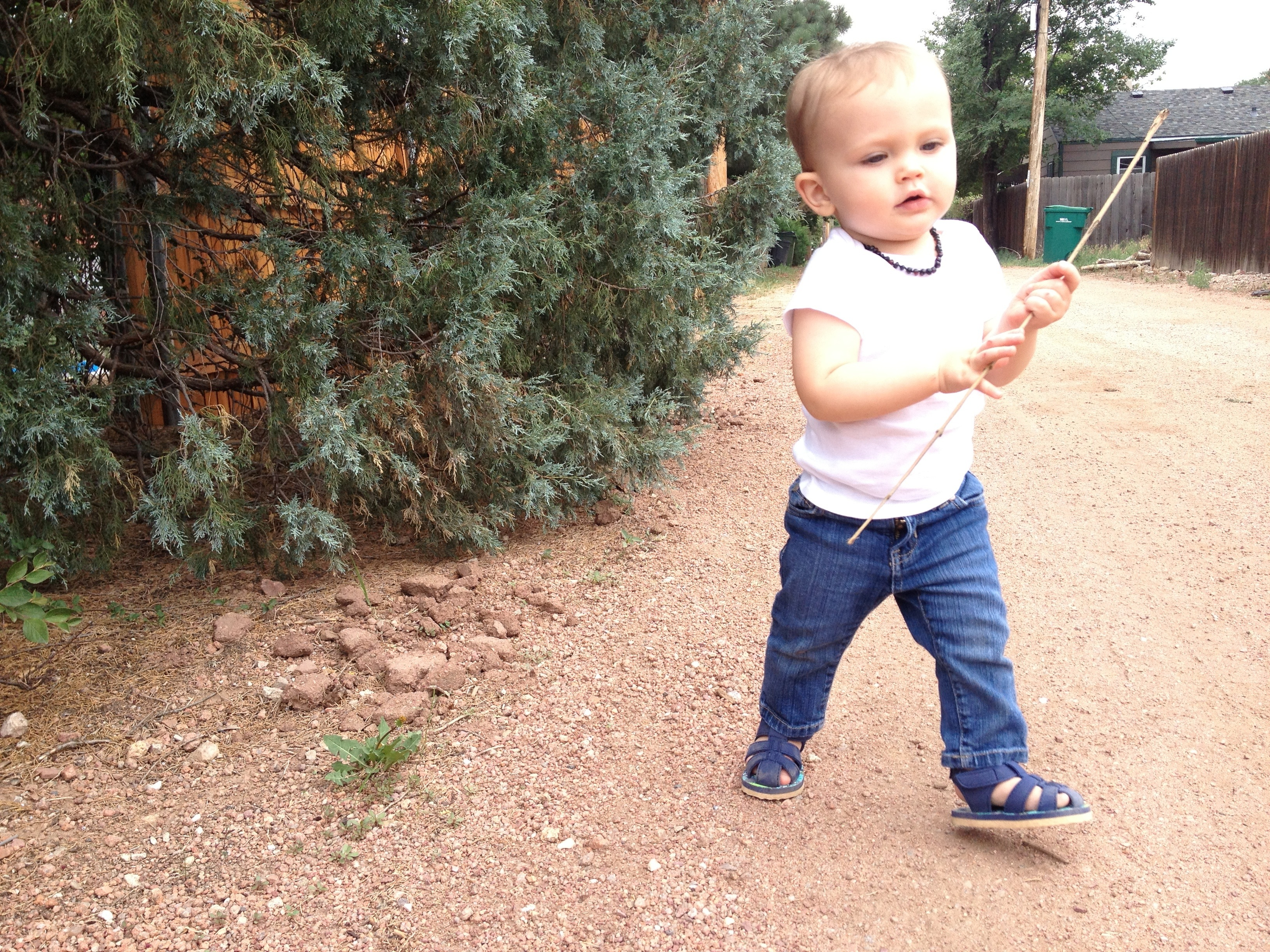 Felix walks down the alley with his stick