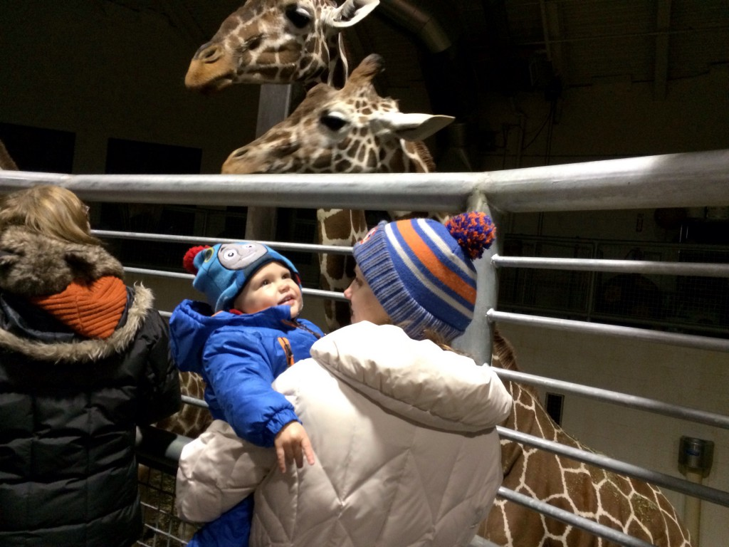 Felix and Colleen check out the giraffes