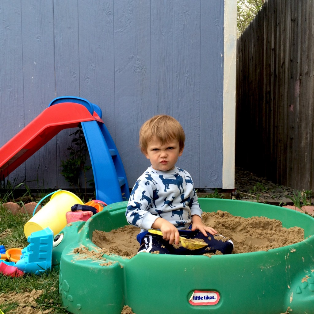 the many expressions of Felix in the sandbox